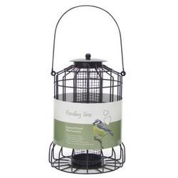 Feeding Time Squirrel Proof Nut Lantern