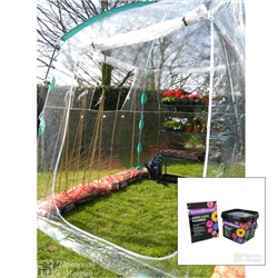 Pop up Greenhouse and Incredibloom Pack