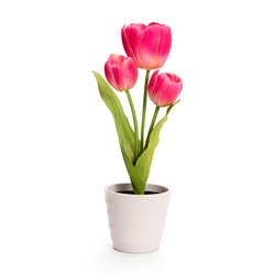 Tulips with 3 LED Lights (Scented)