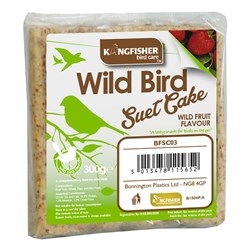 Suet Cake with Wild Fruit