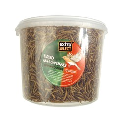 Extra Select 3L Tub Mealworms