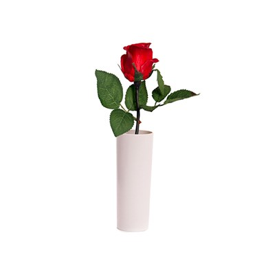 Blossom Collection Potted Rose with 1 LED Light