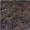 Shredded Horse Manure XL 50L Bag for Mulching