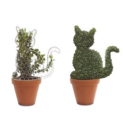 Cat Design Box Topiary Plant on Frame