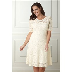 Lace Fit and Flare Dress 41in