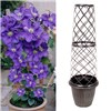 Tower Pot and Trellis with 3L Patio Clematis
