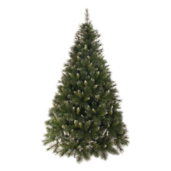 210cm Franklin Fir with Silver Glitter Tips No Colour