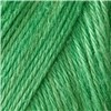 Caron Simply Soft Green 3-6Oz