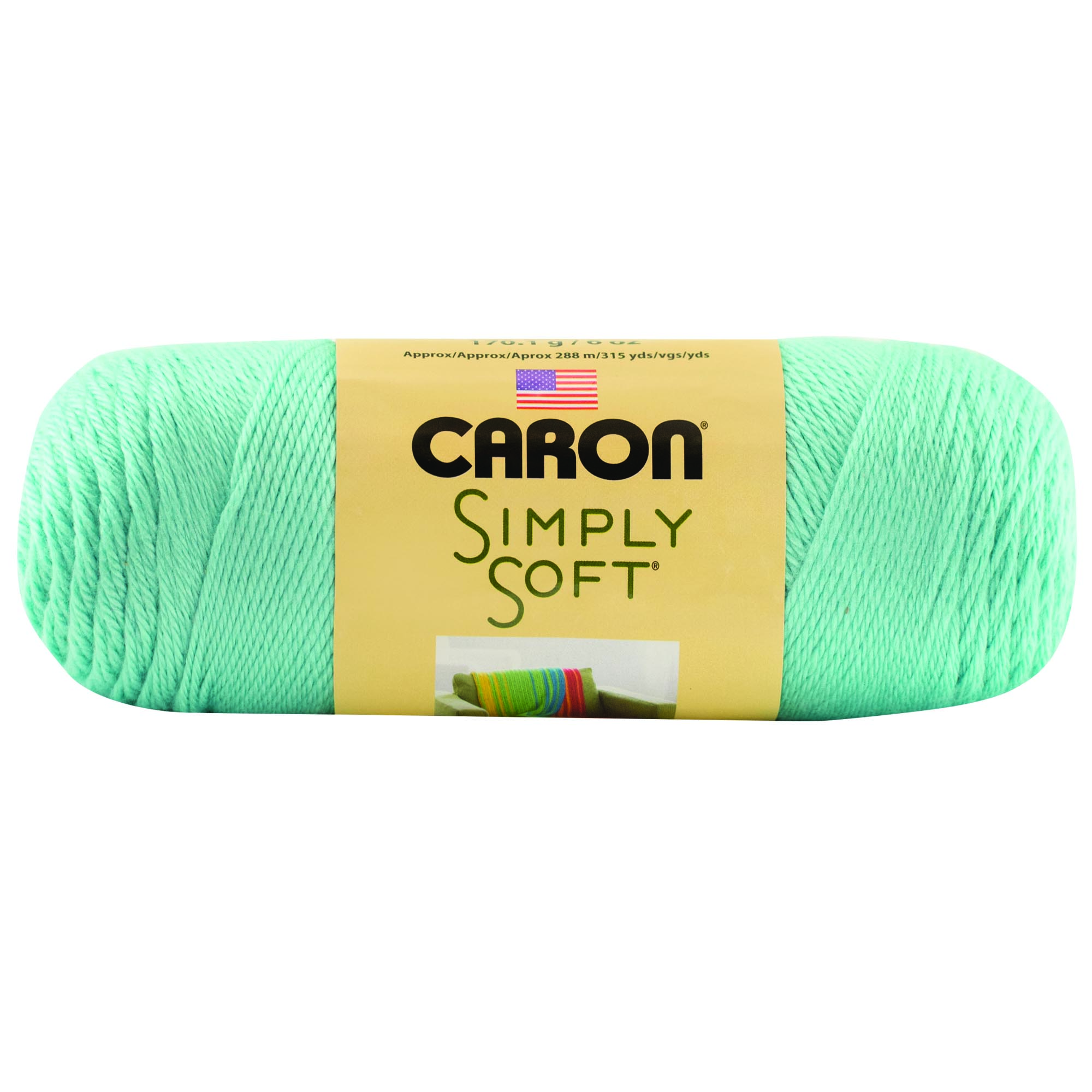 Caron Simply Soft Robins Egg 3-6Oz