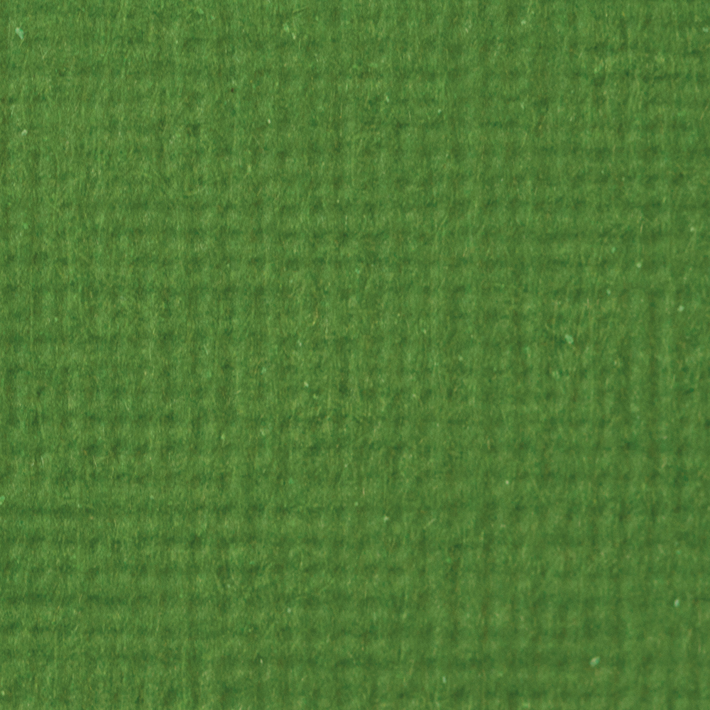 Tonic Craft Perfect 12x12 - Fern Green No Colour