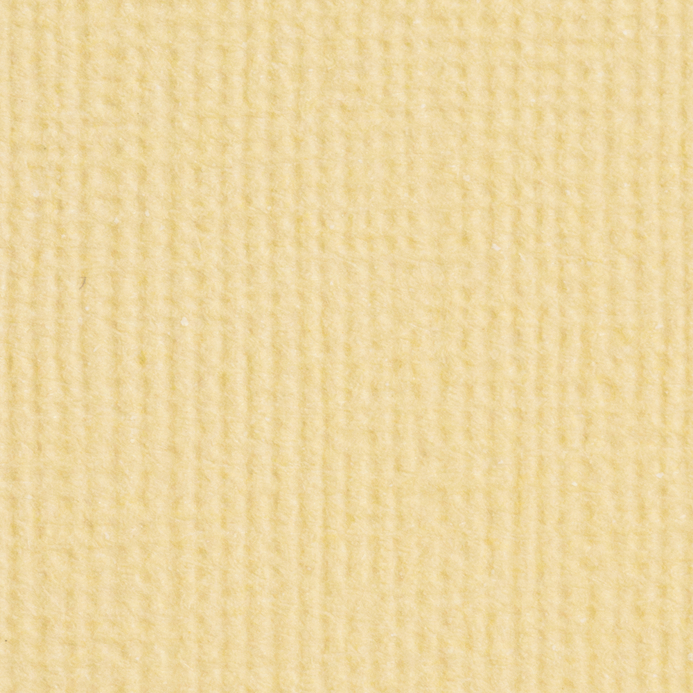 Tonic Craft Perfect 12x12 - Champagne No Colour