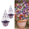 Pair of Eclipse Planters with 24 Patio Perfect Sweet Pea Plants