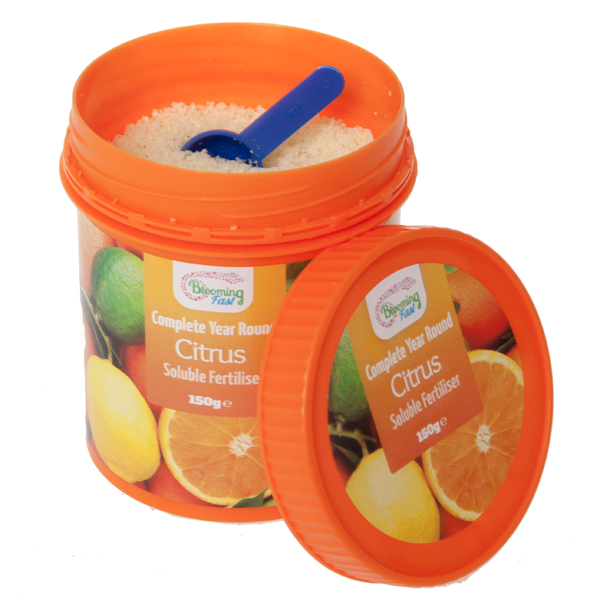 Blooming Fast Year Round Complete Citrus Feed 150g Tub No Colour
