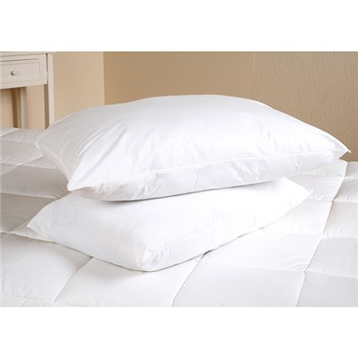 Downland Eucalyptus Pillow Pair