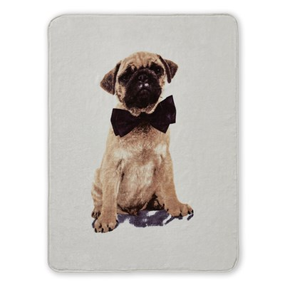 Pug Panel Raschel Throw (150 x 200cm)