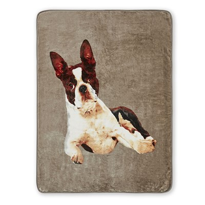 French Bulldog Panel Throw (150 x 200cm)