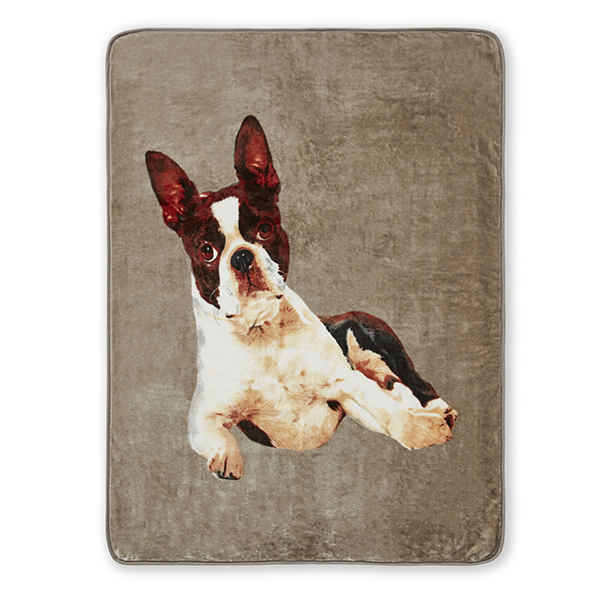 French Bulldog Panel Throw (150 x 200cm) No Colour