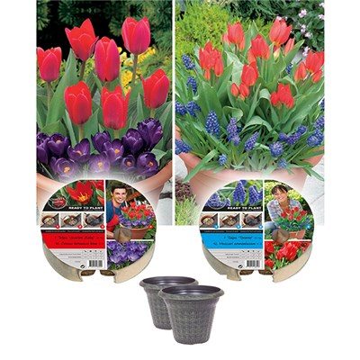 Pair of Plant-o-Mat Drop-in Bulb Planters with Decorative Pots