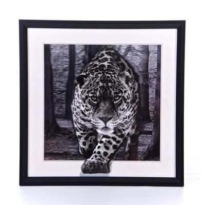 Black and White Leopard 5D Illusion Framed Art 40cm x 40cm