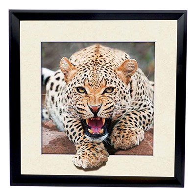 Leopard 5D Illusion Framed Art 40cm x 40cm