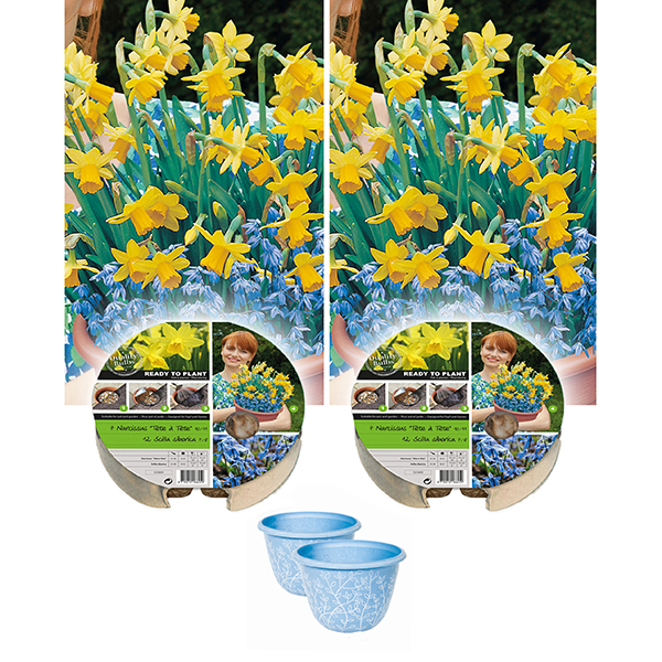 Pair of Narcissi Plant-o-Mat Drop-in Bulb Planters with Decorative Pots No Colour
