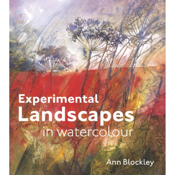 ISBN 9781849940900 Experimental Landscapes in Watercolour No Colour