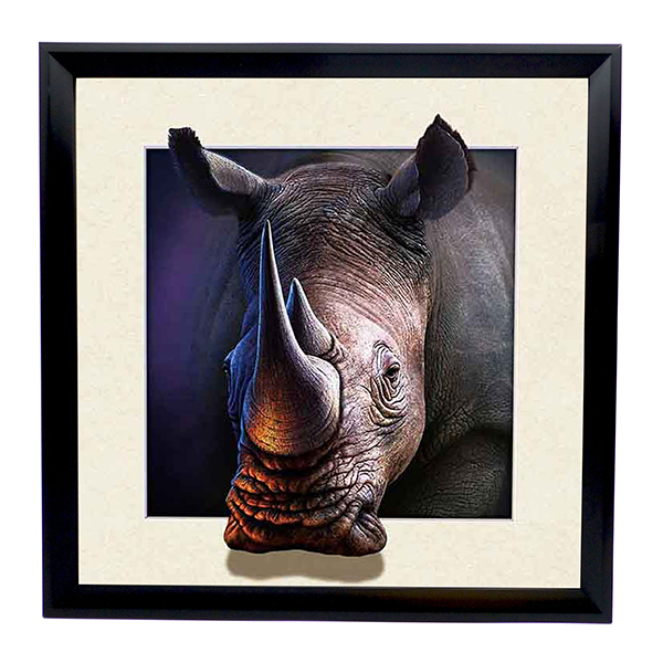 Rhino 5D Illusion Framed Art 40cm x 40cm No Colour