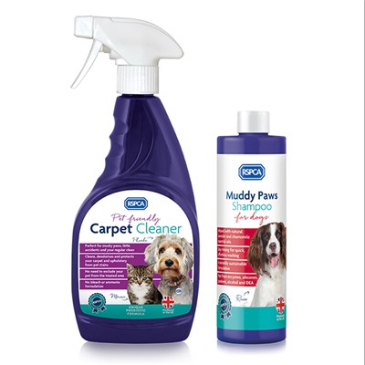 Muddy Paws Shampoo + Carpet Cle