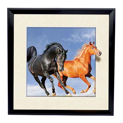 Wild Horses 5D Illusion Framed Art 40cm x 40cm