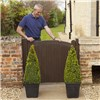 Box Topiary Pyramid 1.1-1.2m Tall in Planter