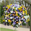 Pair of Pansy Cool Wave pre-planted yellow 11 inch hanging baskets