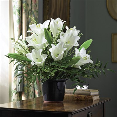 Madonna Lily Centrepiece with BONUS Silk Flower Cleaning Spray 1603633