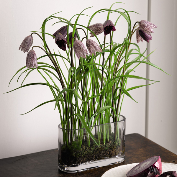 Oxford Fritillaries with BONUS Silk Flower Cleaning Spray 1603633 No Colour