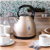 Salter Polaris Dome Kettle 1.7 Litre Champagne
