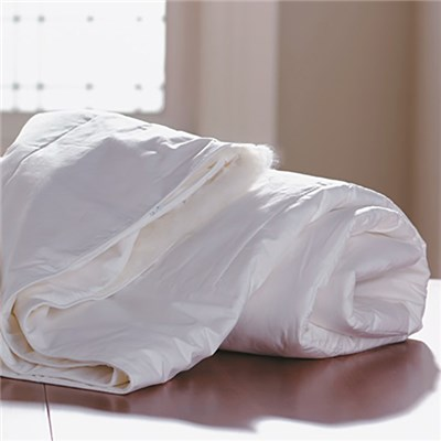 Mulberry Silk Anti-Allergy Duvet (Single)