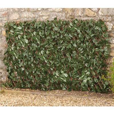 Ivy Leaf Folding Hedge Trellis 1 x 2m