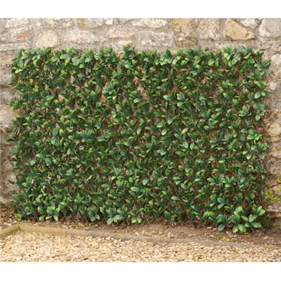Laurel Leaf Folding Hedge Trellis 1 x 2m