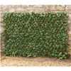 Laurel Leaf Folding Hedge Trellis - 1 x 2M - Model G1044