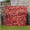 Maple Leaf Folding Hedge Trellis - 1 x 2M - Model G3710