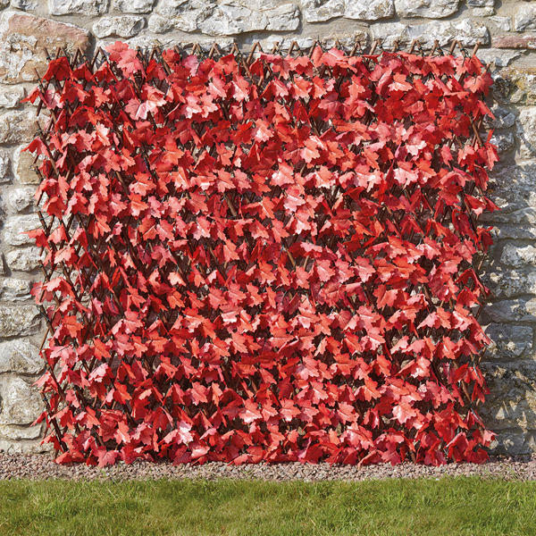Maple Leaf Folding Hedge Trellis 1 x 2m No Colour