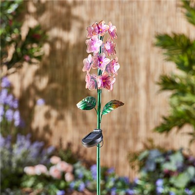 Solar Glass Pink Hyacinth Stake Light