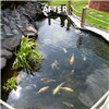 Pond Clear Pro 2 Step - Small Pond Kit for 10,000L Pond