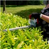 Webb 20v Cordless Hedge Trimmer incl. 1 x 2Ah Battery & Charger