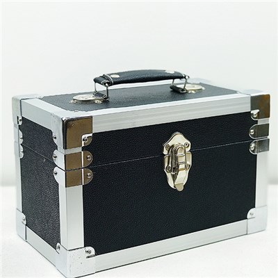 CD Storage and Carry Case SCD24