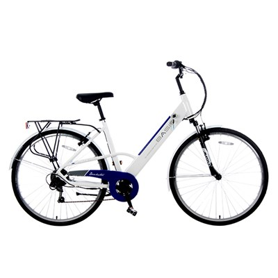 Basis Dorchester 6sp 36V 250W Electric Bike with Integrated Battery