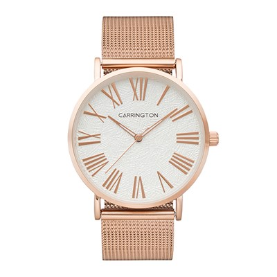 Carrington Eliza Ladies' Watch with Stainless Steel Bracelet