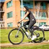 InSync Townmaster 36V 250W Electric Bike with Integrated Battery
