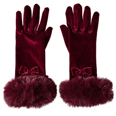 Joe Browns Winter's Wish Velvet Gloves