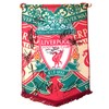 Liverpool FC Team Pennant Multi Signed by current players