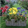 Drop in Balcony Planter & 60cm Windowbox Kit